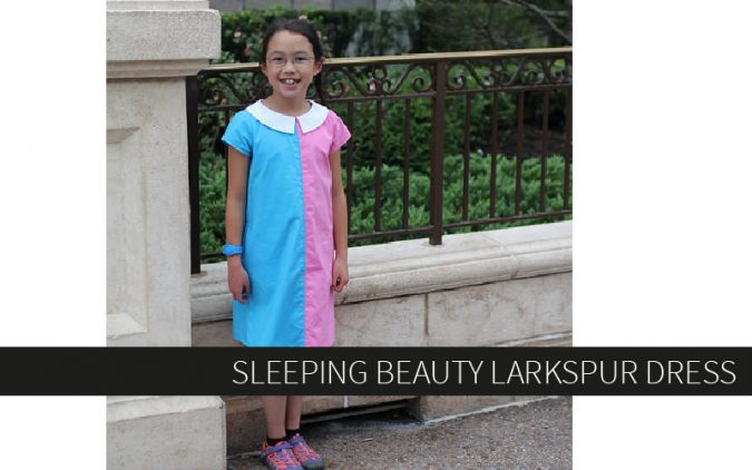 Sleeping Beauty Larkspur Dress